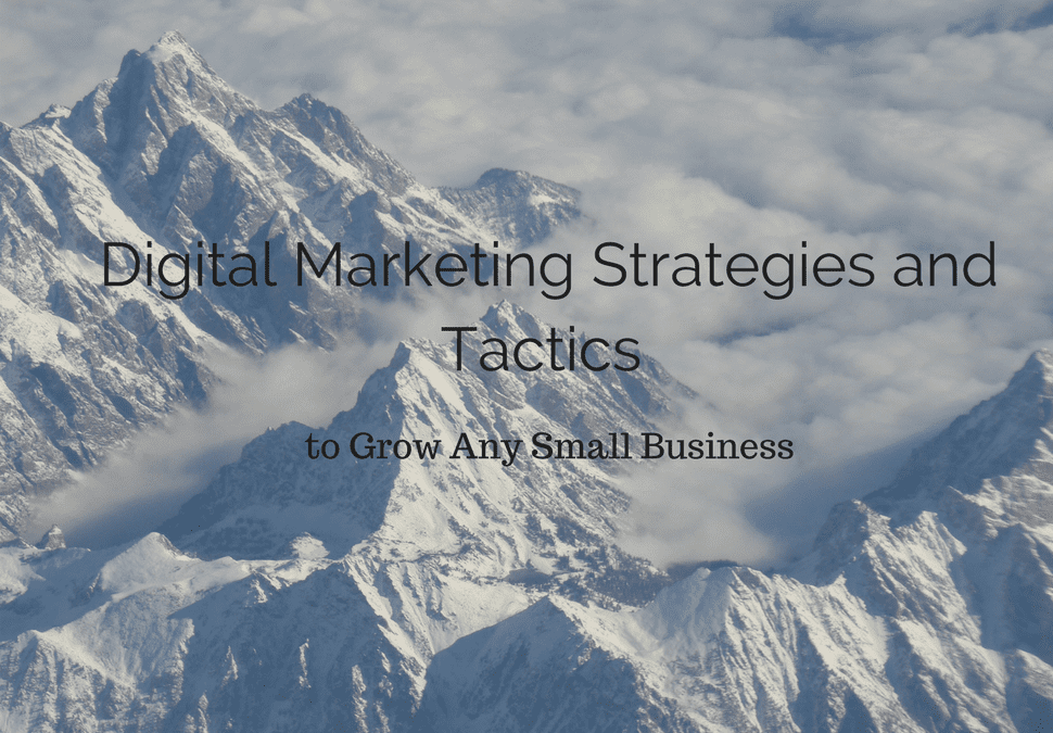 7 Reasons Why Small Businesses Need Digital Marketing (Course Introduction)